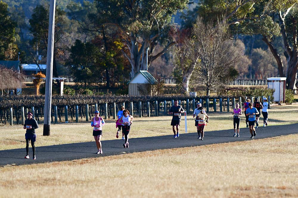 running in the vines mudgee half marathon